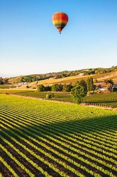 Reminds me of sleeping on the Trampoline at Nonna's - Napa Valley Balloons, California,