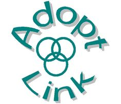 Great facilitator's website for domestic adoption