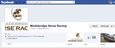 Wadebridge Horse Racing - Point-To-Point course