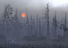 Misty Summer Night somewher in wilderness, photo by Jussi Helimäki