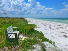 A quiet place to sit and watch the surf at Honeymoon Island State Park in Dunedin, Florida. Honeymoon Island Florida, Florida Vacation, Vacation Spots, Tampa Beaches, Clearwater Tampa, Dunedin Florida, Harbor Beach, Day Trips, Great Places