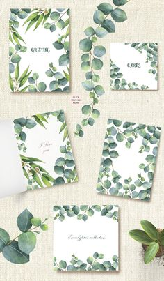 Watercolor Eucalyptus. by Elena Medvedeva on @creativemarket #flowers #clipart #botanical #botanicalillustration #artwork #floral #illustration