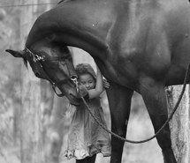 Inspiring image dreamer, true love, friendship, horses