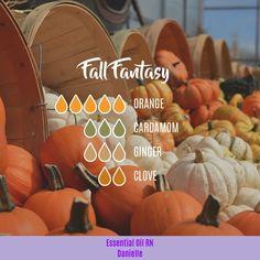 Fall Fantasy - Essential Oil Diffuser Blend