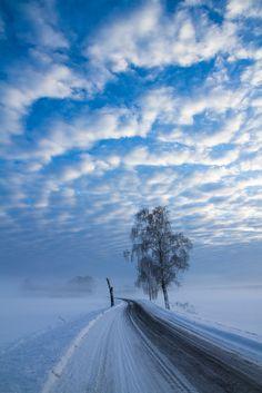 Winter snow...Photo By Josefin Nillson