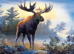 Diy diamond painting cross stitch diamond embroidery kits The deer picture diamond mosaic home Decor gifts Mountain Crafts, Moose Pictures, Cross Paintings, Wildlife Art, Pics Art, Painting Patterns, Mammals, Moose Art, Creatures