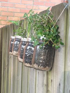 Hanging Mason Jar Herb Planters featured on Bourbon & Boots