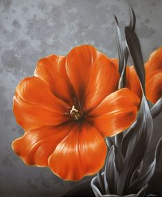Orange tulip... awesome!