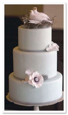 Classic Cakes by K. Rose Photo