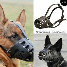Bőr szájkosár kutyáknak. A formatervezés erős, ugyanakkor puha is, jól megtartja a formáját, fém szegecsekkel rögzített. A belső bélés megvédi az orrot a kidörzsölődéstől, és kényelmes érzést biztosít kedvencének. #szájkosár #muzzle #muzzletraining #kutyabolt #kutya #kutyak #magyarkutya Hungary, Animals, Blue Prints, Animales, Animaux, Animal, Animais