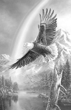 "Shop American Expedition Jigsaw Puzzles - ""Mountain Flight"" Bald Eagle 1000 Piece Puzzle - Gather the family for a new wildlife puzzle The Eagles, Bald Eagles, Aigle Animal, Graffiti Kunst, Eagle Painting, Eagle In Flight, Eagle Pictures, Eagle Art, Wildlife Art"