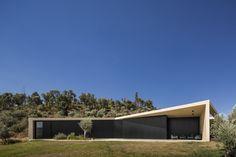 Maison contemporaine perchée sur une colline contemplant la pinède environnante - Tomar Hill House par Contaminar Arquitectos -  Tomar, Portugal