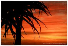Sunset in Cape Town Cape Town, Celestial, Sunset, Photography, Outdoor, Image, Outdoors, Photograph, Fotografie