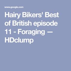Hairy Bikers' Best of British episode 11 - Foraging — HDclump Apple Sponge Pudding, Blackberry Sauce, Hairy Bikers, Best Of British, Baking Parchment, Skewers, Free Food