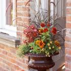 Love this for fall front porch decor!