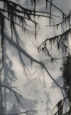 Hand drawn graphite on Duralar cast in layers of resin. Colour made using layers of transparent tape. Artist is Brooks Salzwedel. Basquiat, Tracing Art, Tinta China, A Level Art, Abstract Nature, Encaustic Painting, Tree Art, Dark Art, Landscape Paintings