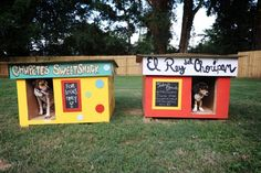 I LOVE THE BOLD COLORS!!! DIY dog houses