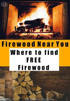 Where to find firewood near you, what type of wood to use and how to cure it for use. Everything you need to know about firewood.  #firewood #fire #cold #stayingwarm #winter #freewood Buy Firewood, Firewood Storage, Portland, Seasoned Wood, Kiln Dried Wood, Landscape Services, Diy Fire Pit, Wood Burner, Country Christmas