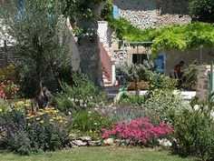 200 Crocosmia Lucifer graines Ready To Grow Jardin Ampoule Plante sécheresse Grande Valeur