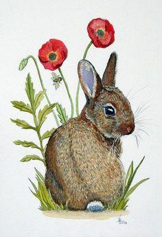 Un dessin original monté de « Coquelicot Bunny » à la plume et aquarelle par Vicki Horsley