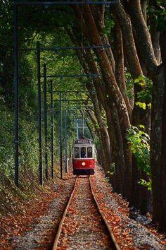 White Dog Blog: Sintra, Portugal