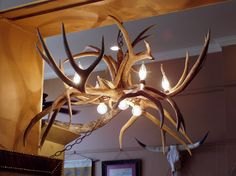 Mule Deer Antler Chandelier, 719.657.3111, www.coloradocowgirls.net Deer Antler Chandelier, Rustic Lamps, Mule Deer, Deer Antlers, Ceiling Lights, Unique, Home Decor, Deer Horns, Decoration Home