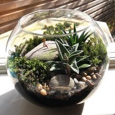 60-Adorable-Spring-Terrariums-For-Home-Décor_09 - family holiday.net/guide to family holidays on the internet