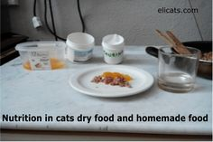 Nutrition in cats dry food and homemade food - http://elicats.com/nutrition-in-cats-dry-food-and-homemade-food/ Understanding the nutritional needs of the cat - do we confidently rely on pet food, on croquettes and various cans always more appetizing?    Nutrition in cats dry food and homemade food Some personal considerations about feline nutrition! Without doubt the best choice, if we know the ...