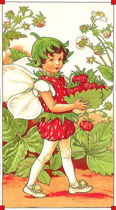 ON SALE DC 4275 - Rare Strawberry Flower Fairy Panel, Cotton Fabric, from the Cecily Mary Barker Fairies Collection. Cicely Mary Barker, Arte Peculiar, Arte Indie, Illustration Art, Illustrations, Fairy Pictures, Vintage Fairies, Fairytale Art, Beautiful Fairies