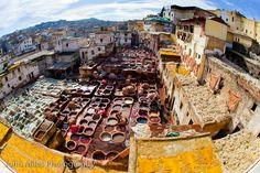 Chouarra Tannery, Fez, Morocco