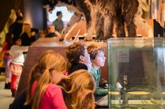 IJstijd! Voor kinderen van 6 t/m 12 jaar. Rijksmuseum van Oudheden in Leiden. In de spannende kinderexpo IJstijd kan je bewijzen dat jíj de ijstijd aan kunt.