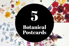 5 Set to choose from Pikolab on and Dried Flowers, Postcards, Germany, Poster, Handmade, Etsy, Design, Flower Preservation, Hand Made