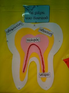 Τα μέρη του δοντιού Dental Health, Dental Care, Community Helpers Crafts, Science Boards, Greek Language, Body Systems, School Themes, Tooth Fairy, Summer School
