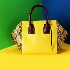 ... a striking statement on our Cavendish Bag in canary yellow and alter  python adding bold colour to Stella McCartney Winter handbags. Photo  courtesy of. e04905e0f0d96