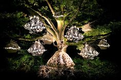 The Faraway Tree - Kirsty Mitchell  (found @ My Modern Met)