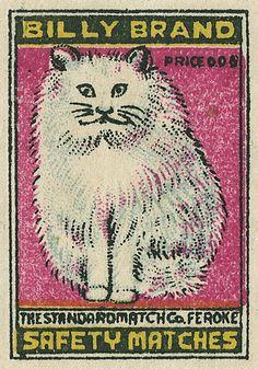 Indian matchbox label, via Flickr.
