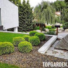 Kerti gömbök Stepping Stones, Sidewalk, Outdoor Decor, Plants, Instagram, Stair Risers, Side Walkway, Walkway, Plant