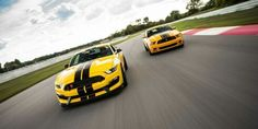 2013 BOSS 302 Mustang with 2016 Shelby GT350