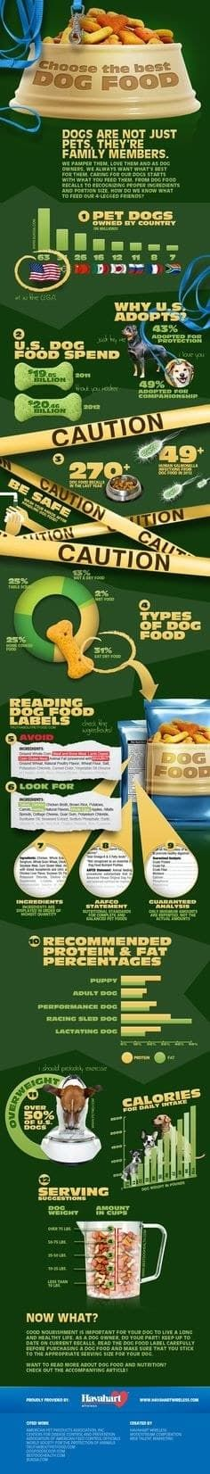 Choose the best dog food. What to look for in dog food. Help find what to look for when buying dog food.