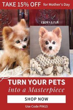Super Cute Puppies, Cute Baby Dogs, Cute Baby Animals, Cute Funny Baby Videos, Cute Funny Babies, Pomeranians, Yorkies, Beautiful Dogs, Animals Beautiful