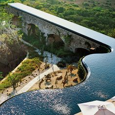 this marcel marongiu designed swimming pool overlooks the lush green landscape of mexico. by fason schmidt see more architecture and pools on designboom via designboom- amazing, pool, design Architecture Cool, Landscape Architecture, Landscape Design, Green Landscape, Garden Design, Architecture Definition, Infinity Pools, Design Exterior, Luxury Pools