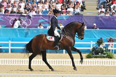 Is the British dressage world starting to take notice of Iberian horses? - Horse & Hound http://www.horseandhound.co.uk/features/iberian-horses-for-dressage-488664