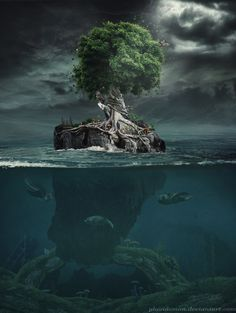 one tree surreal - Google Search