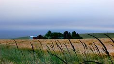 Farm Scene 2 Photograph
