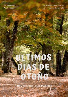 29 Ideas De Sierra Norte Madrid Turismo Rural Rurales Sesión De Fotos Al Aire Libre