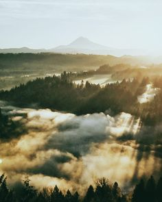 Almost 70k! by Nick Verbelchuk on 500px