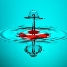 Red Bottom. Making a splash: Water droplets frozen in high speed photographs by Markus Reugels