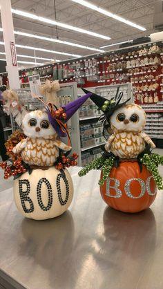 Cute little owl pumpkins...Robin Evans