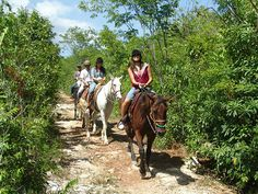 Horseback Riding in Playa del Carmen - Amazing Activities