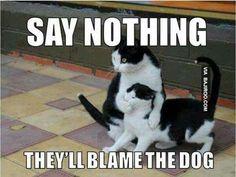 Bahahahahahaha!!!!!!!!